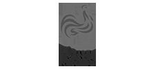 logo-francerugby